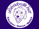 The Labrabdoodle Trust