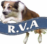 RVA Agility - Manufacturers of Quality Dog Agility Equipment